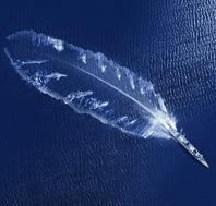 light weight feather